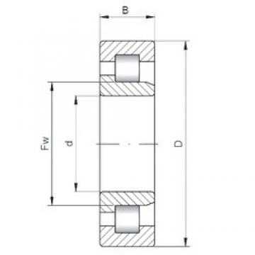 50 mm x 110 mm x 27 mm  ISO NJ310 cylindrical roller bearings